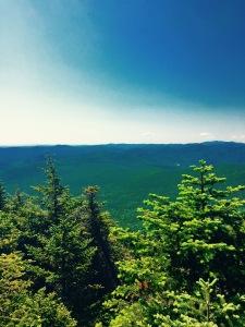 Mt. Roosevelt