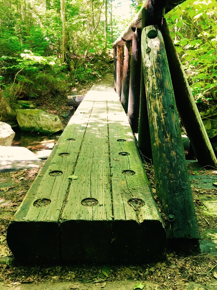 plank over mud