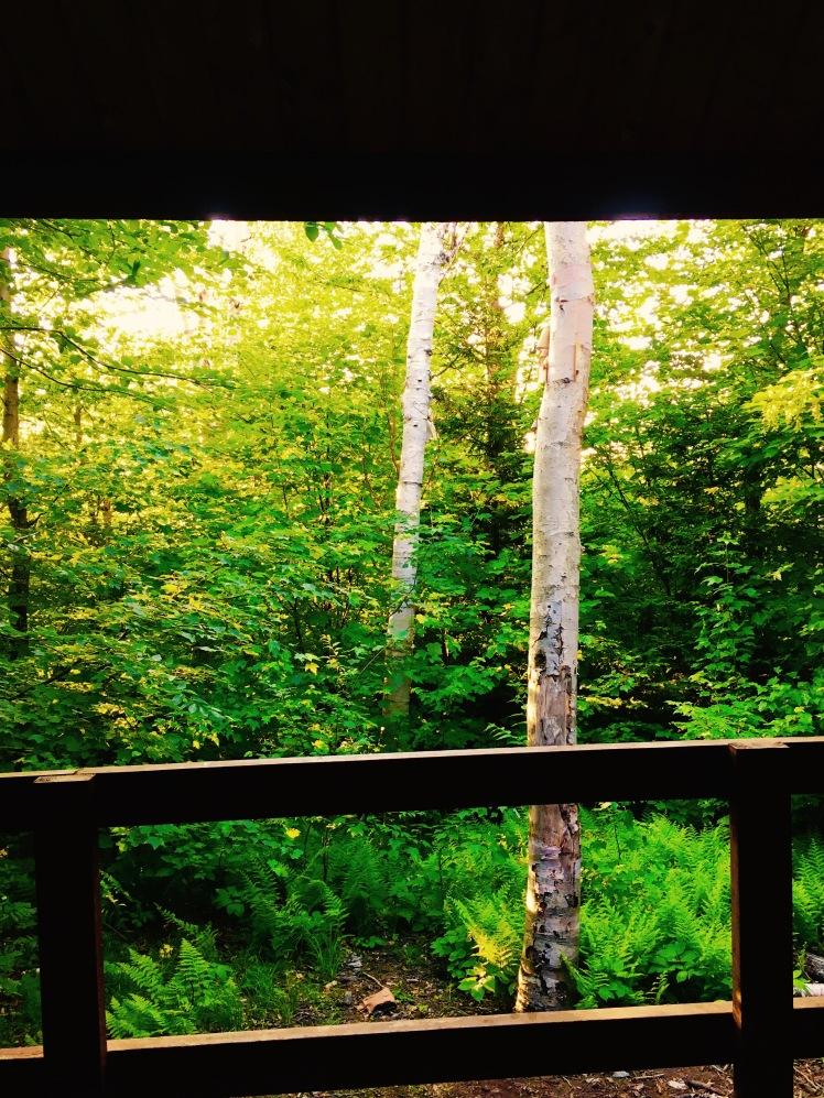 view from Bamfoth Ridge Shelter