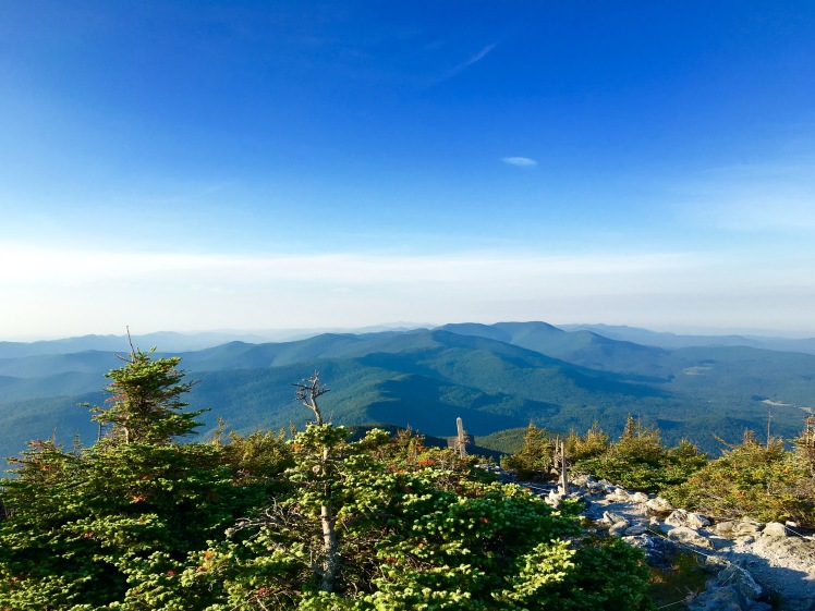 view from Mt. Abraham