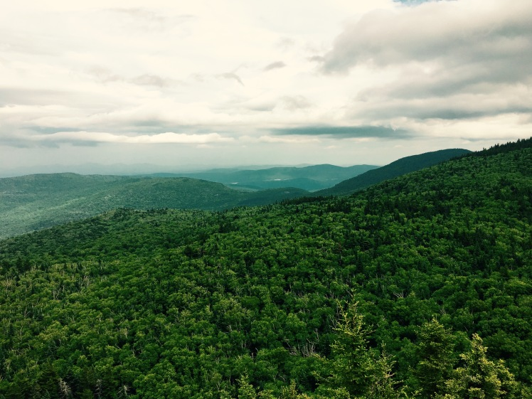 view from Mt. Ethan Allen