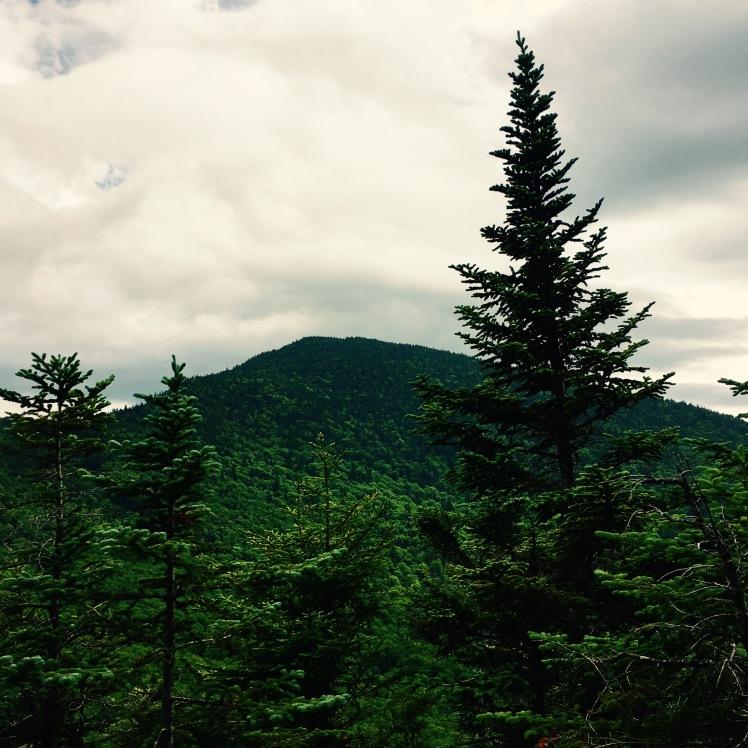 view of Mt. Ethan Allen