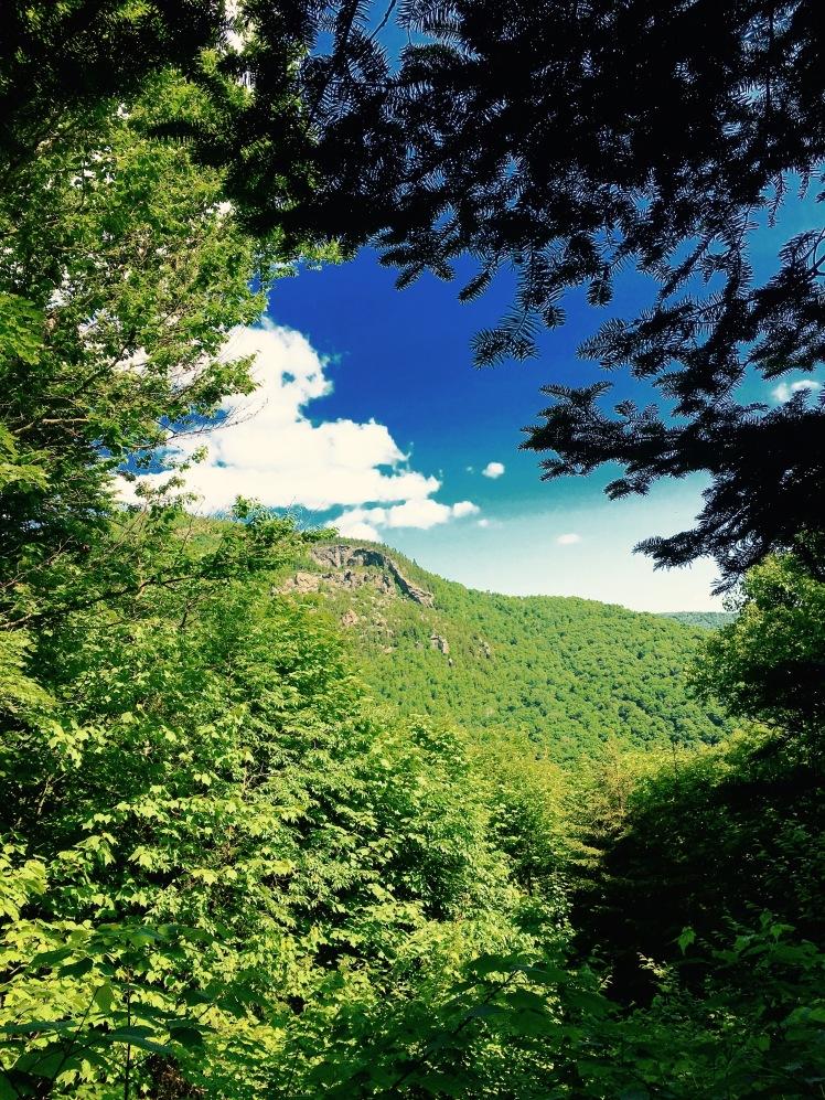 view of Mt. Horrid