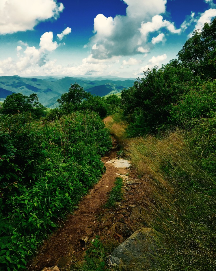 Art Loeb Spur - trail