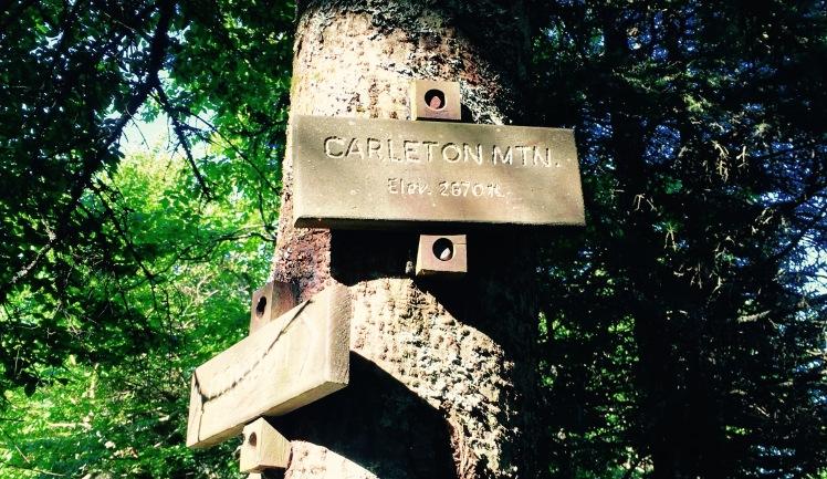 Carleton Mt. - the last climb