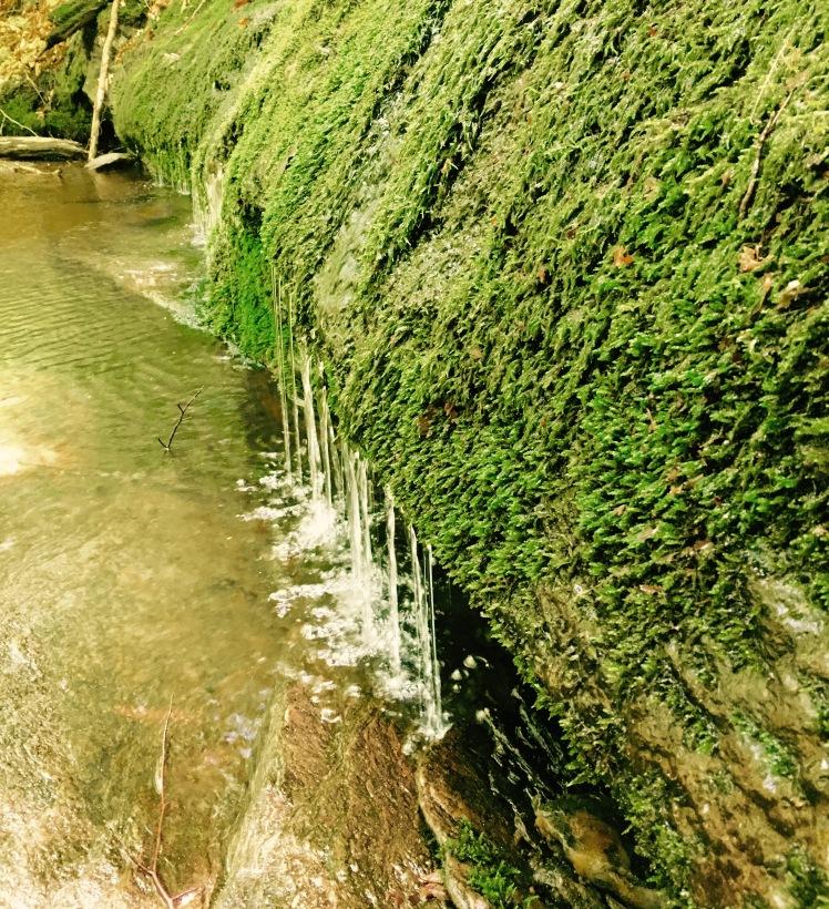 Long Trail - brook