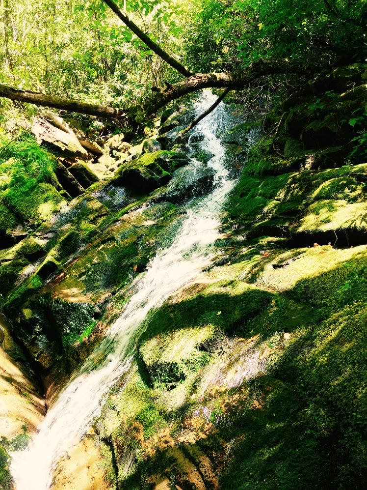 Bartram Falls