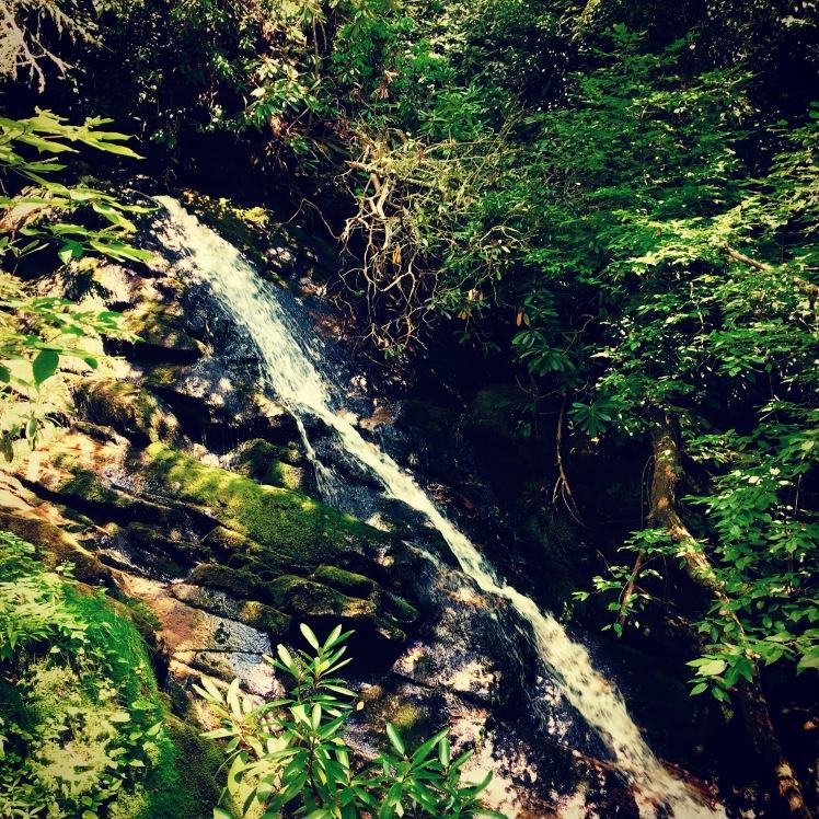 Bartram Trail - Bartram Falls