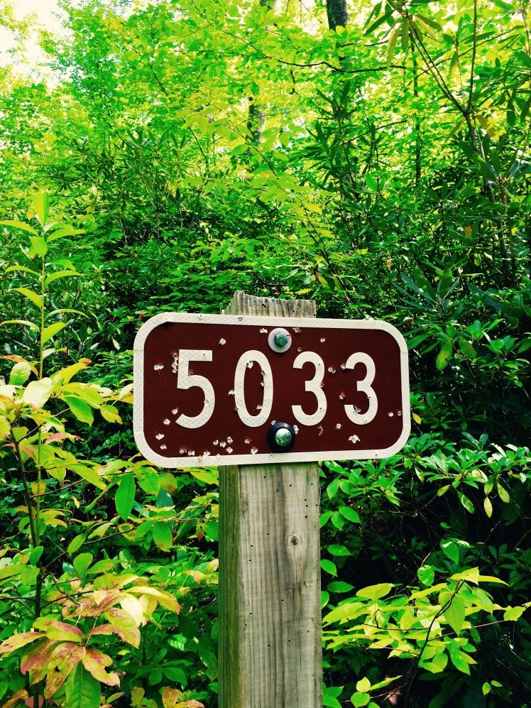 F.S. 5033