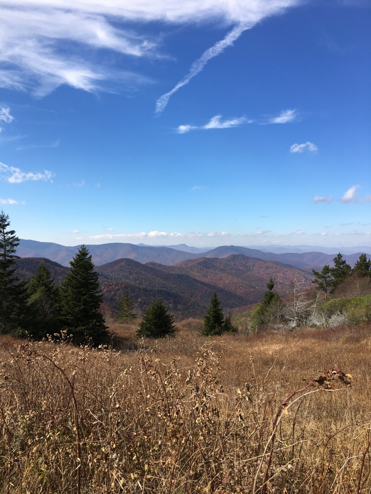 view of Shining Rock Wilderness