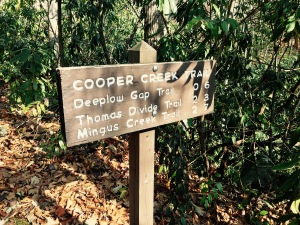Cooper Creek Trail