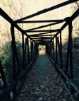 Enloe Creek Trail - bridge over Raven Fork