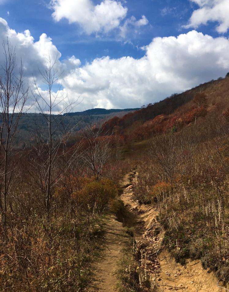 Graveyard Ridge Connector Trail