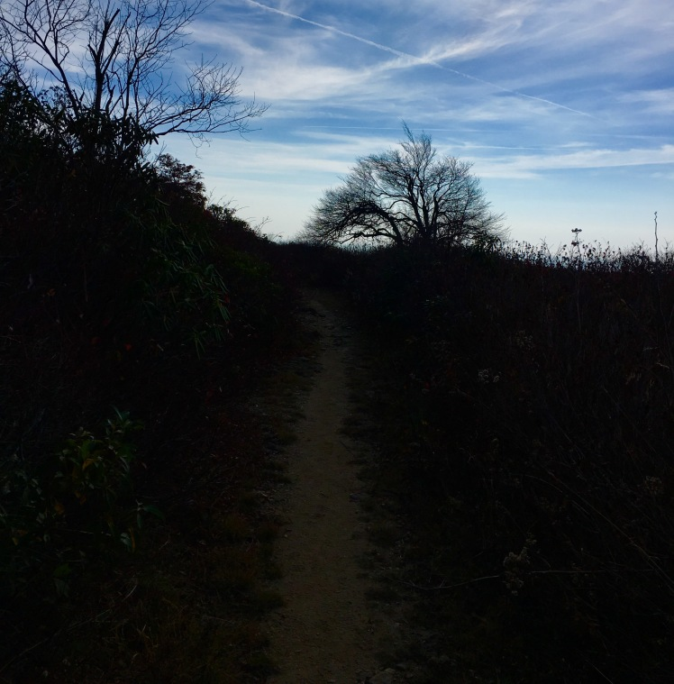 Graveyard Ridge Trail
