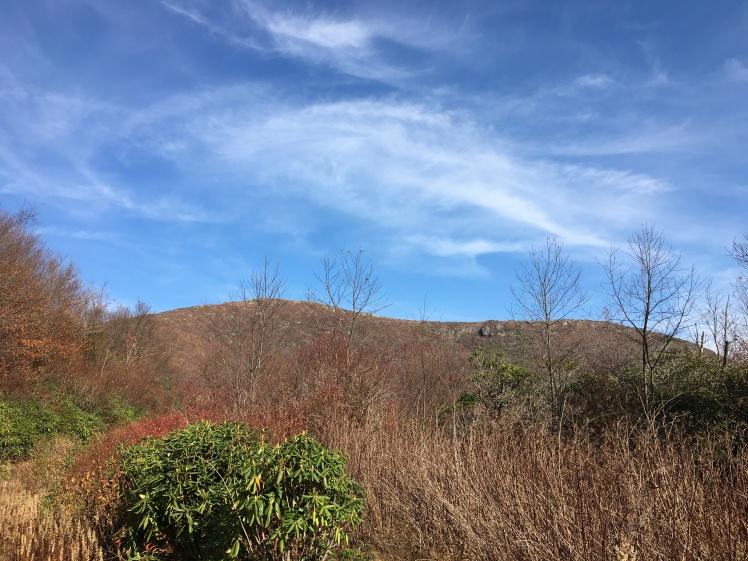 view of Tennant Mountain