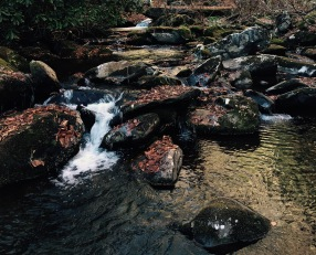 Hughes Ridge Trail