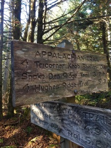 junction of A.T. and Balsam Mountain Trail
