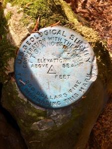 summit of Mt. Guyot
