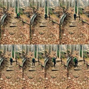 Farlow Gap Trail - anatomy of a technical trail - Johnny