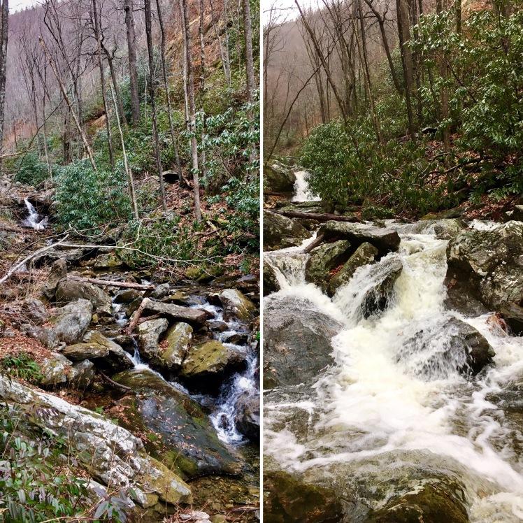 Farlow Gap Trail - Shuck Ridge Creek - Saturday vs. Sunday