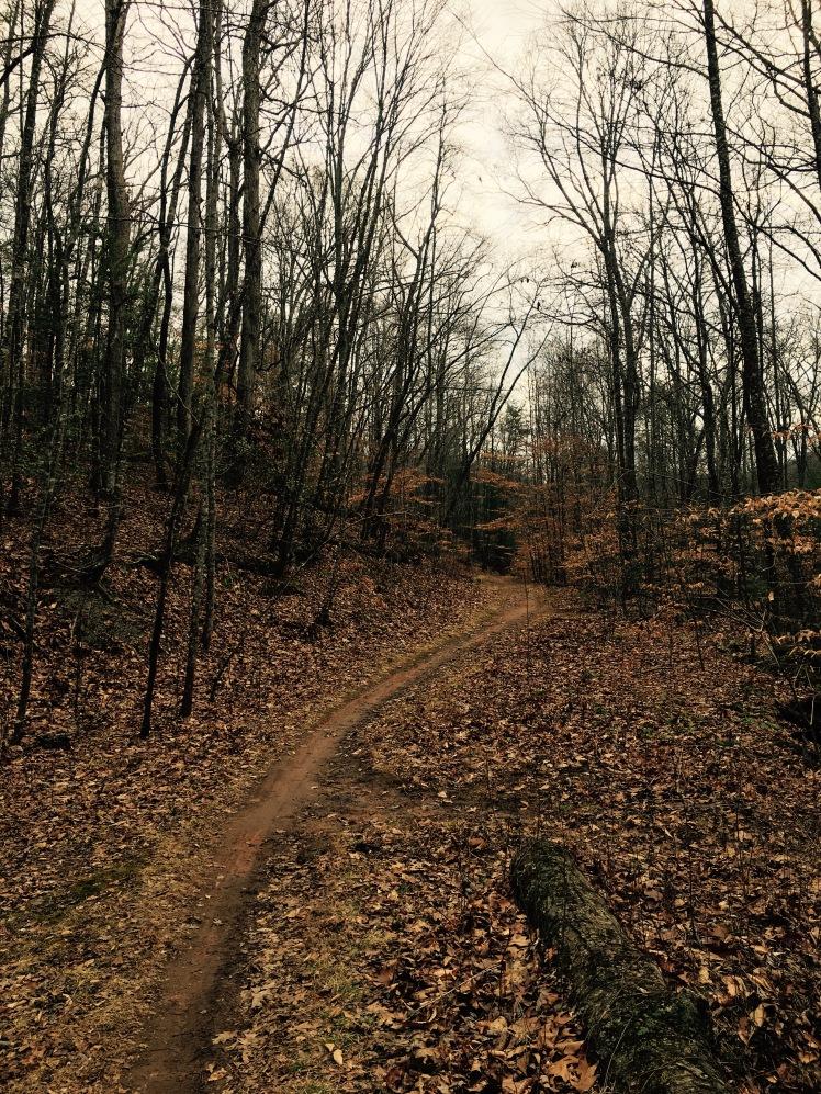 Boyd Branch Trail