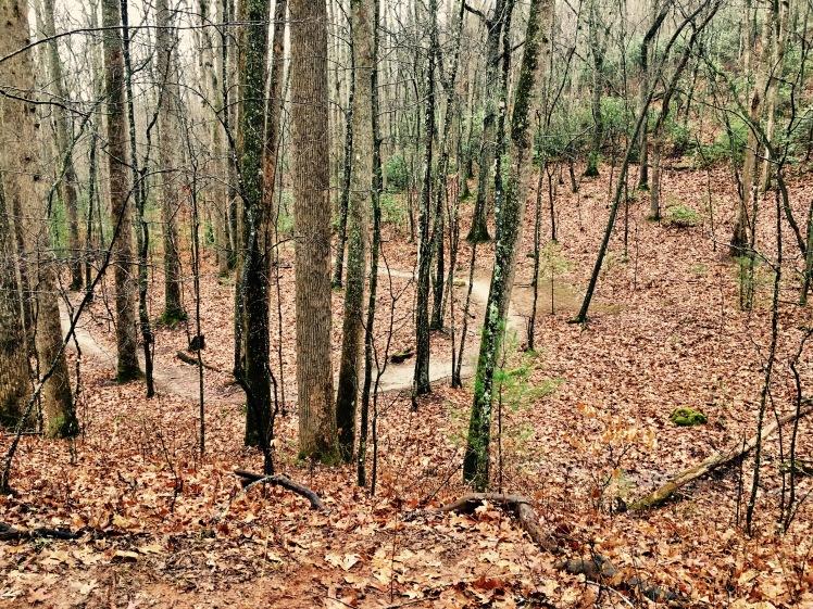 Wolf Branch Trail