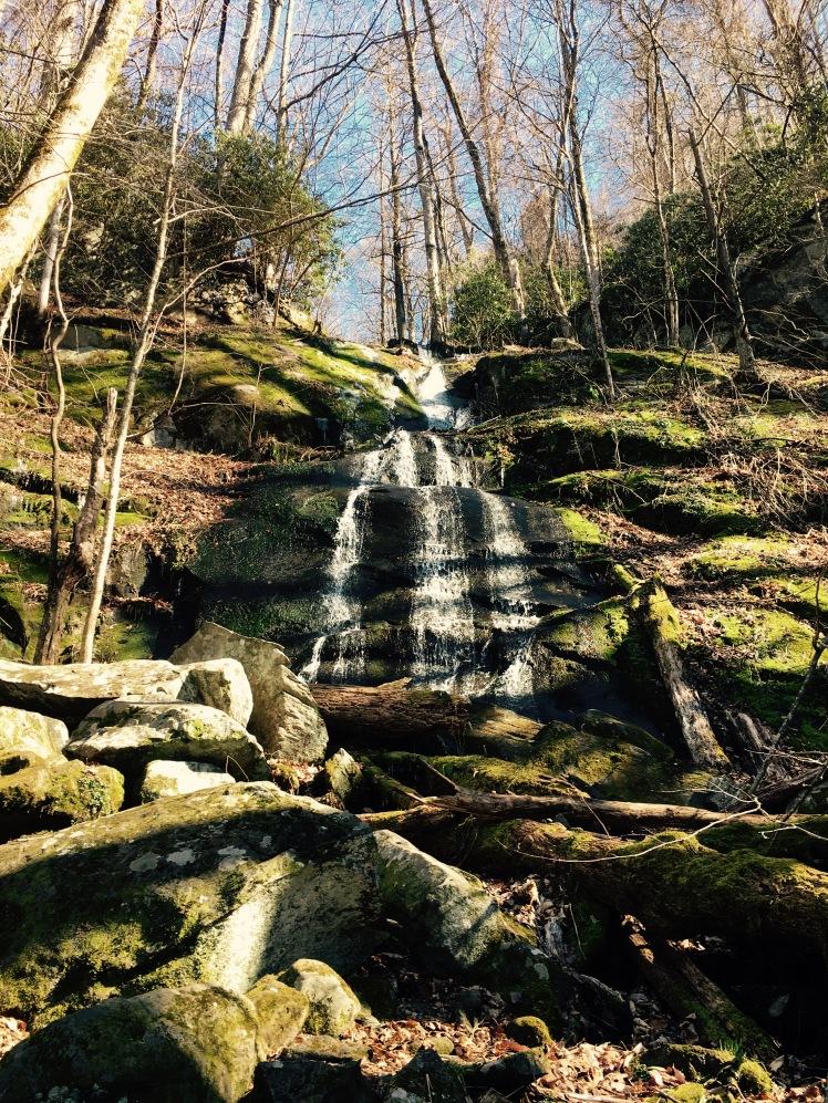 Fern Branch Falls