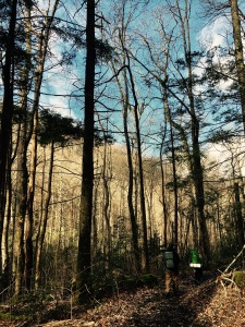 Porter's Creek Trail - Tony and Johnny