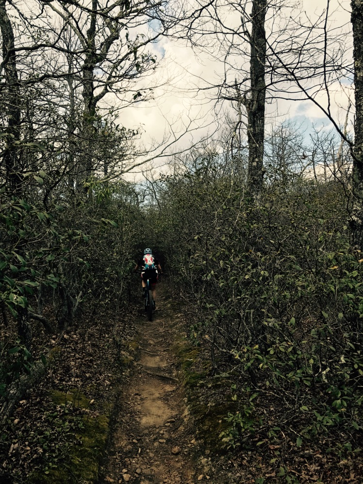 Laurel Mountain Trail - Pisgah Stage Race