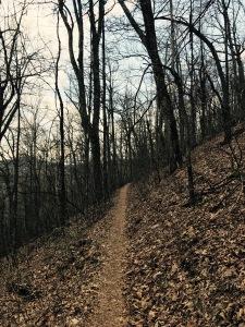 Laurel Mountain Trail