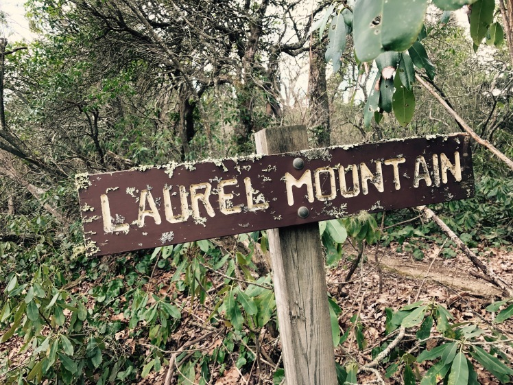Laurel Mountain Trail - trailhead