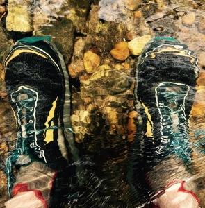 Vineyard Gap Trail - Altra Lone Peak 2.5