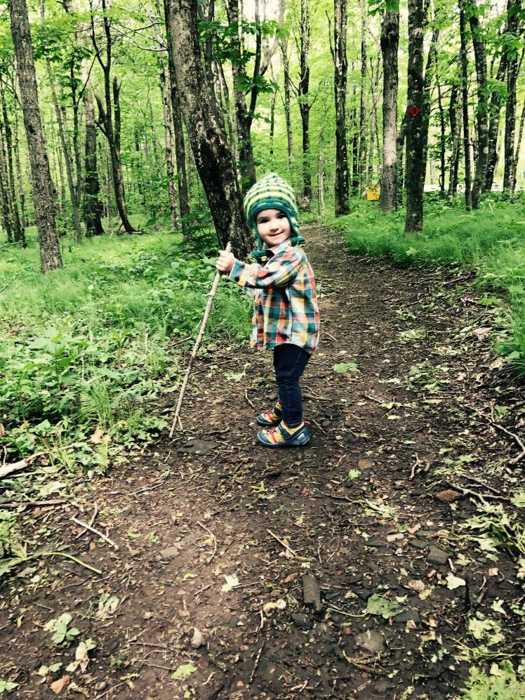 Elk Knob State Park - Alice hikes