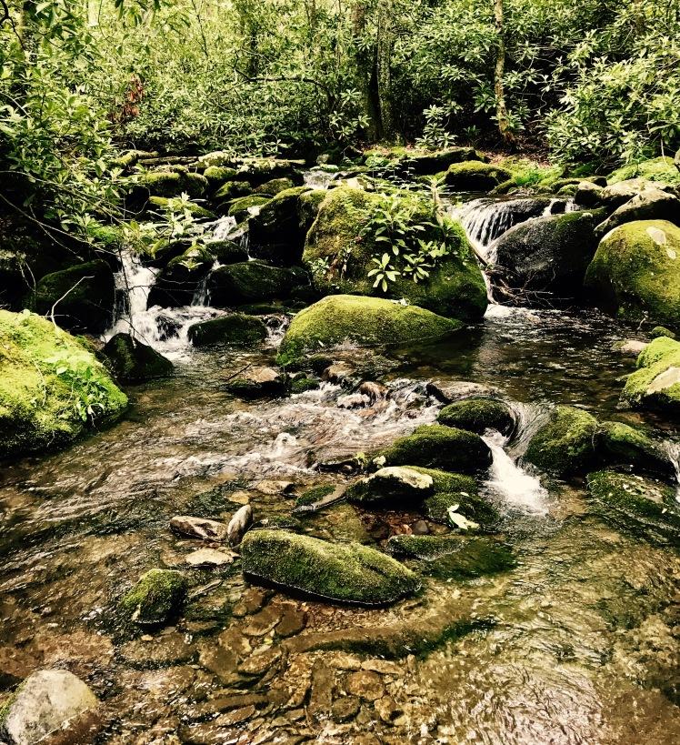 Swallow Fork Trail - Swallow Fork