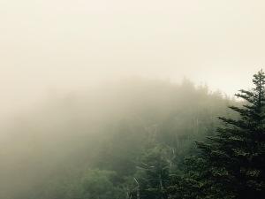 Daniel Boone Scout Trail - Calloway Peak