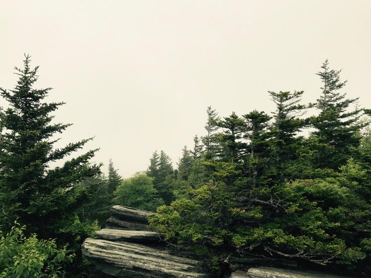 Daniel Boone Scout Trail - Flat Rock