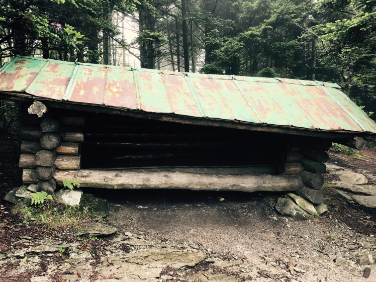 Daniel Boone Scout Trail - High Balsam Shelter