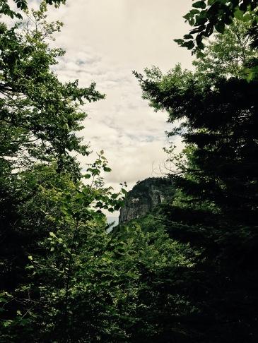 Profile Trail - view of Profile