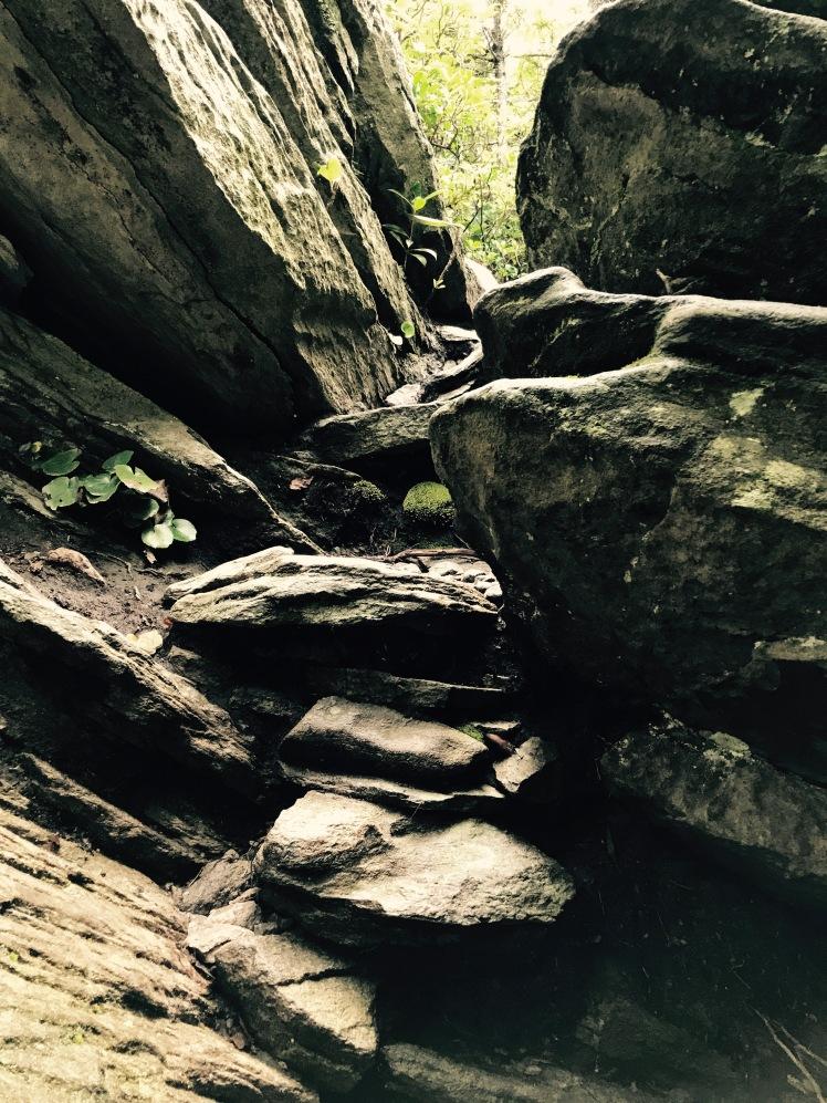 Cragway Trail - trail