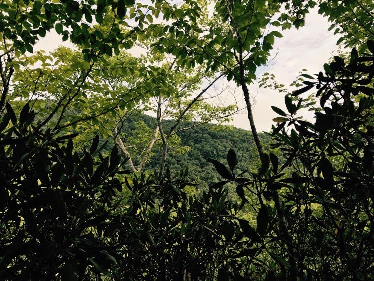 Cragway Trail - vista