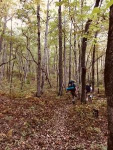 Fires Creek Rim Trail