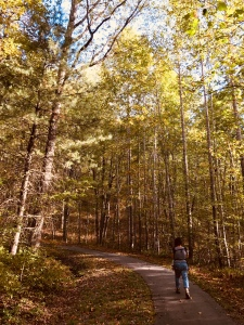Forest Discovery Trail - Emily