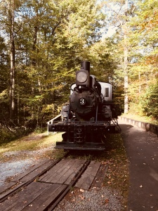 Forest Festival Trail - train
