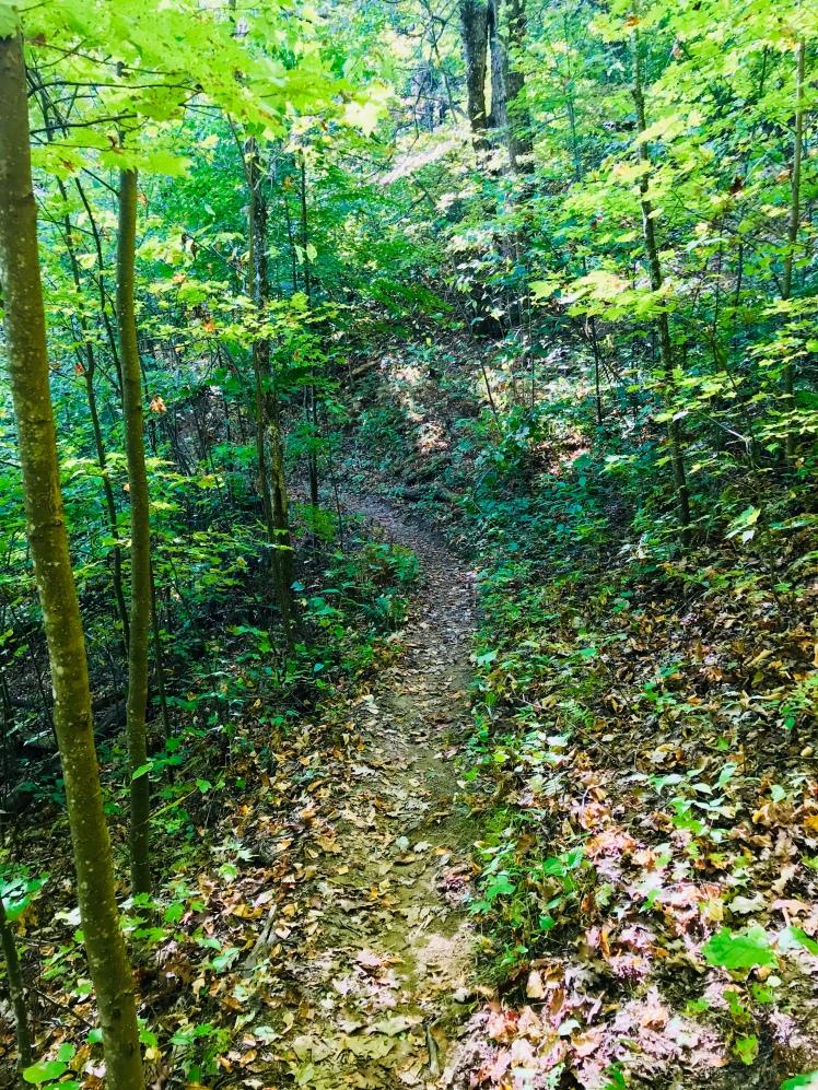 Squirrel Gap Trail