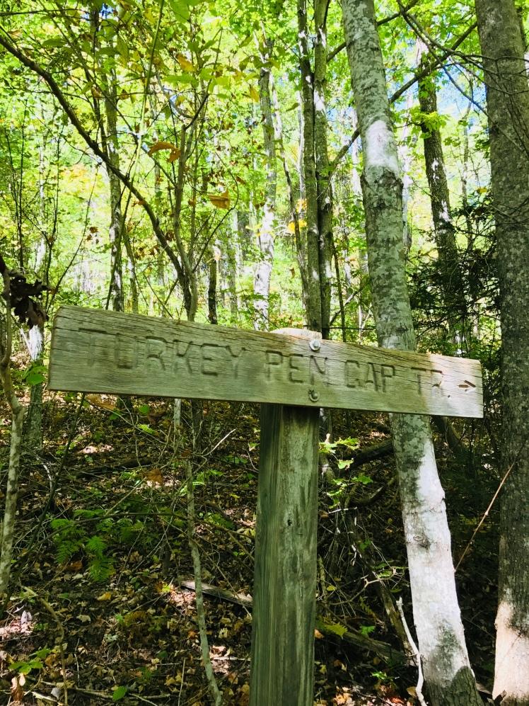 Turkey Pen Gap Trail
