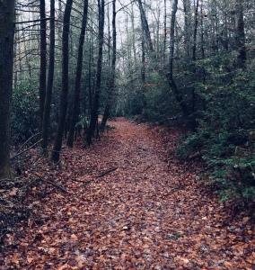 Riverside Trail