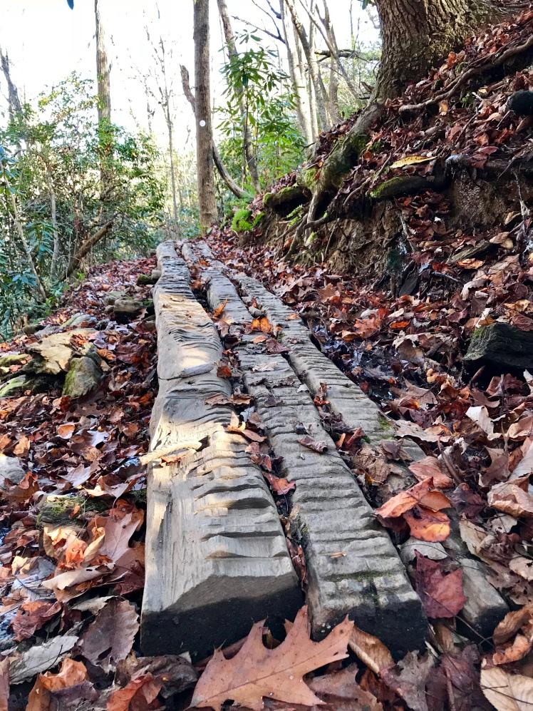 Shut-In Trail - path