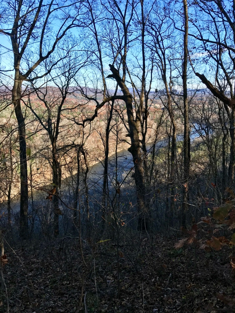Shut-In Trail - view of French Broad