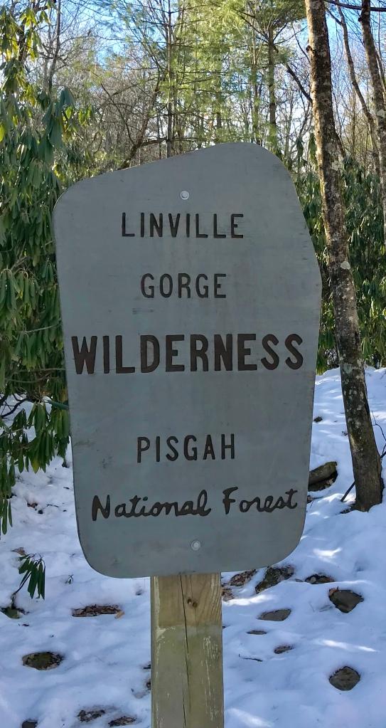 Linville Gorge Wilderness - Sitting Bear trailhead