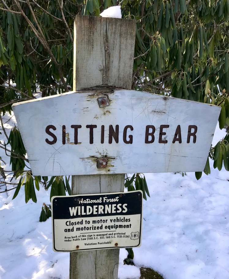 Linville Gorge Wilderness - Sitting Bear trailhead